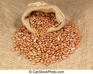 pinto beans in a bag