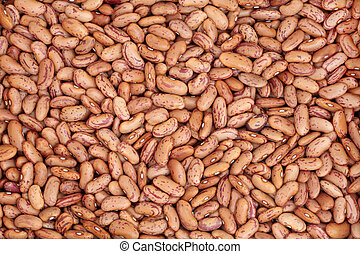 Pinto Beans - Pinto bean dried pulses forming a textured ...
