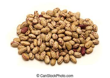 Pinto beans - Pinto Beans on a white background
