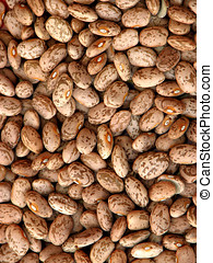 Pinto Beans - Dried pinto beans background