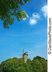 pintoresco, escena, viejo, windmill.