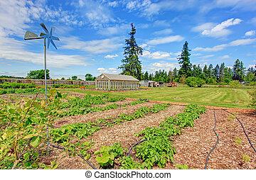 pintoresco, granja, jardín, cama, y, casa verde