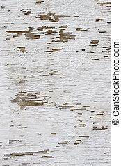 pintura, abstratos, textura, experiência., escamoso, rachado, branca