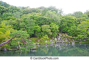 Pinus thunbergii, plants, mountain, lake with reflection in Japan zen garden