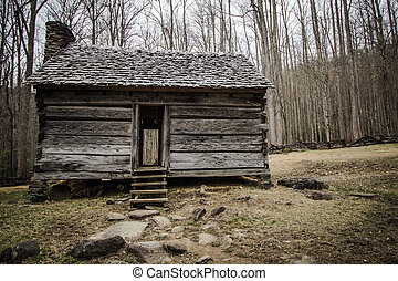 Pioneer Cabin In The Smoky Mountain