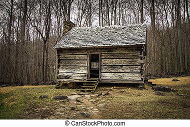 pionier, cabine, in, rokerige bergen