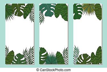 pionowy, banner., ułożyć, drzewo, leaves., tropikalny, dłoń, albo, karta
