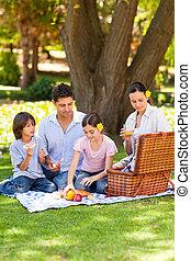 pique-niquer, agréable, parc, famille