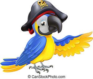pirát, papoušek, ilustrace