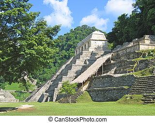 piramide, maya, em, a, selva, palenque, méxico