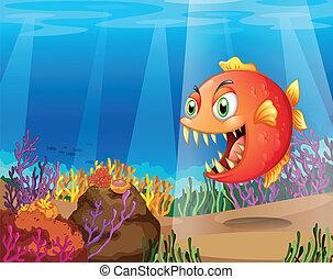 piranha, coralli, mare