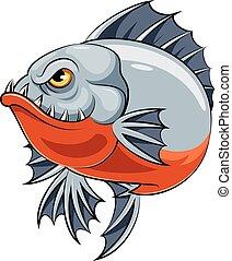 piranha, fish, arrabbiato
