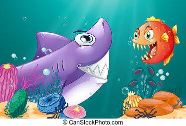 piranha, squalo, mare, sotto
