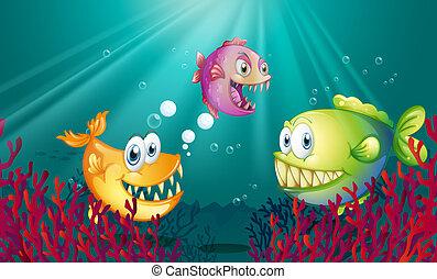 piranhas, coralli, mare, sotto