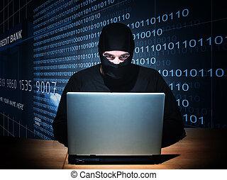 pirata informático, en, deber