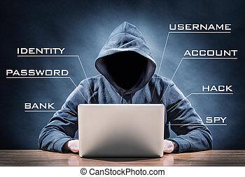 pirata informático