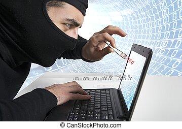pirata informático, y, virus, concepto