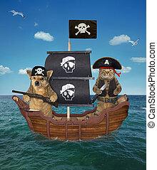 pirate, bateau, chien, chat