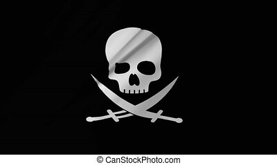 Pirate Flag of Calico Jack Rackham computer animation 2 in 1...