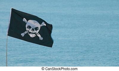 Pirate Flag - Skull and cross bones pirate flag
