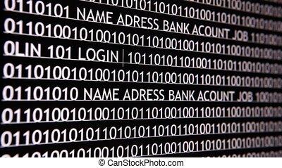 pirate informatique, informatique