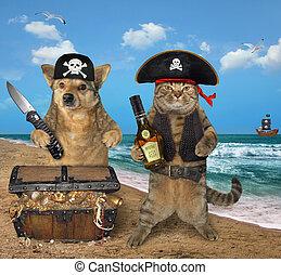 pirate, trésors, chien, chat
