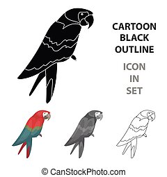 Pirate's parrot icon in cartoon style isolated on white background. Pirates symbol stock vector illustration.
