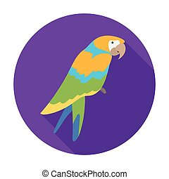 Pirate's parrot icon in flat style isolated on white background. Pirates symbol stock vector illustration.