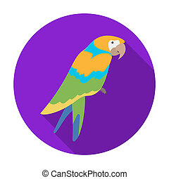 Pirate's parrot icon in flat style isolated on white background. Pirates symbol stock rastr illustration.