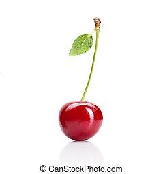 piros cseresznye, noha, zöld, elszigetelt, white