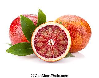 piros, narancsfák