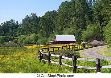 piros szénapajta, alatt, sárga, wildflower, mező