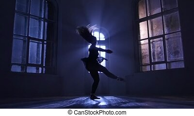 Pirouettes performed by dancer girl in moonlight,...