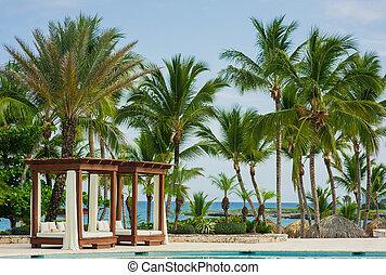 piscina, em, praia tropical, -, férias verão, experiência.