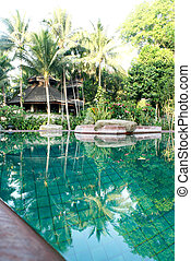 piscina, en, naturaleza