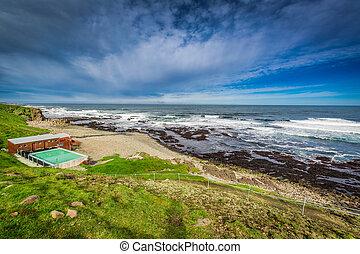 piscina, islândia, ártico, térmico, mar