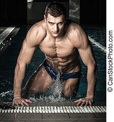 piscina, natação, jovem, muscular, nadador