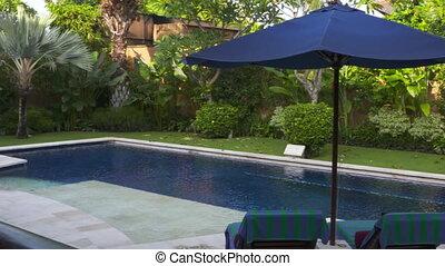piscine, arrière-cour, privé, beau