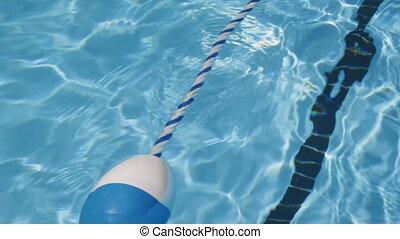 piscine, rope., natation