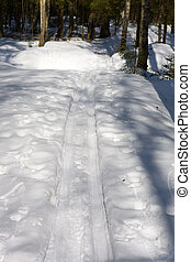 pista, esqui