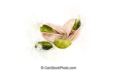 Pistachio Illustration for the overlay - Watercolor drawing...