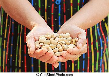 Pistachio nut. - Pistachio nut in old woman hand.