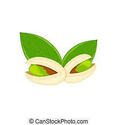 Pistachio nut with green leaves vector illustration isolated on white background. Nut vector