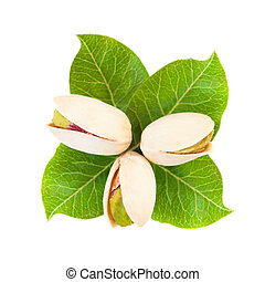 Pistachio nuts with green leaves on white background