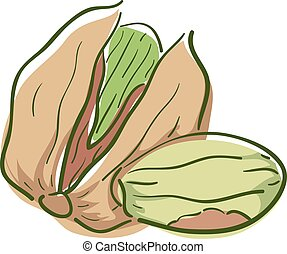 Pistachio Superfood Illustration - Illustration of a ...