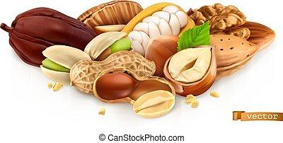 pistachios, アーモンド, ベクトル, ピーナッツ, bean., ココア, 3d, 現実的, イラスト, ...