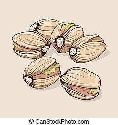 Pistachios. Hand drawn. Vector illustration.