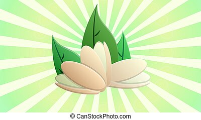 pistachios on a white-green retro background, vector illustration. nuts for food and drinks. green pistachios as natural vitamins. eating tasty and healthy nuts. peanuts on the grass with leaves.