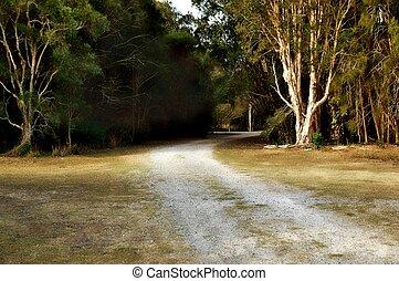 piste, australien, buisson, marche
