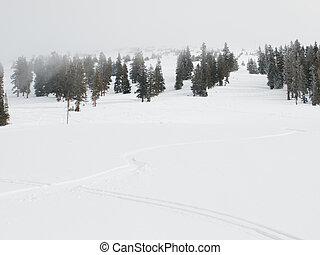 piste, montagne,  ski, côté, frais